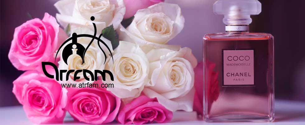 http://www.atrfam.com/media/uploads/banners/rayehecoco.jpg